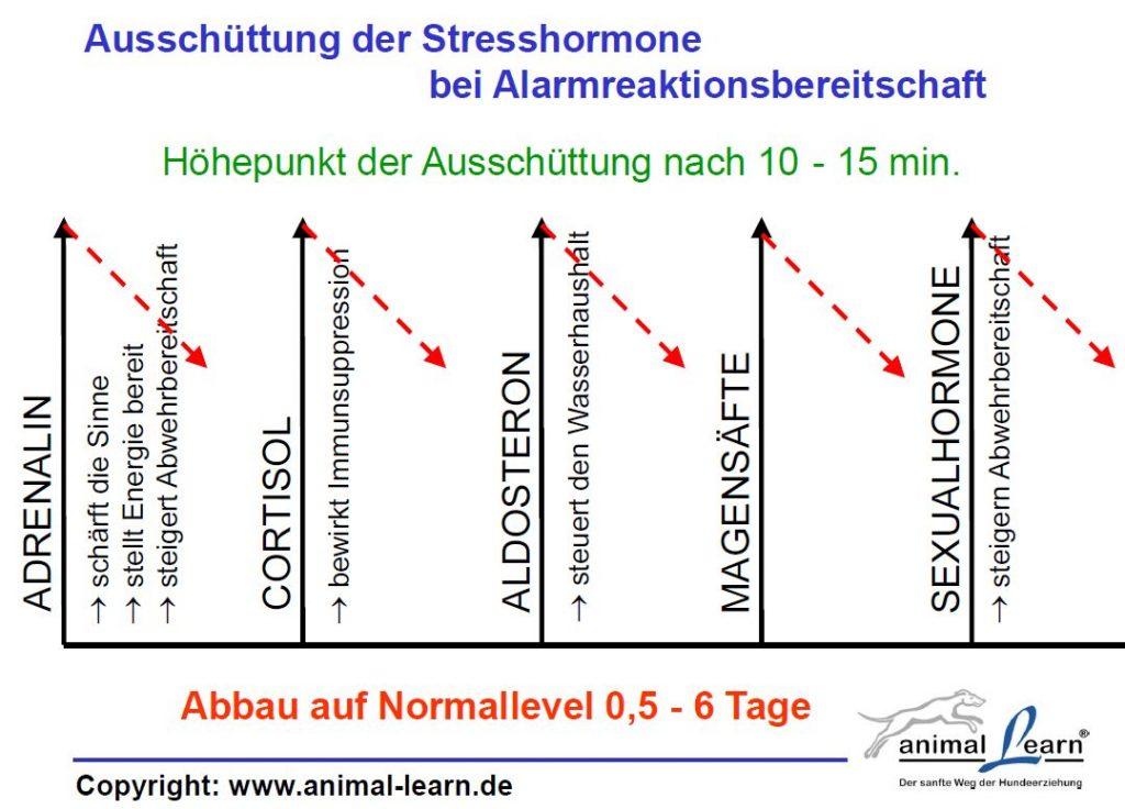 Stresshormone