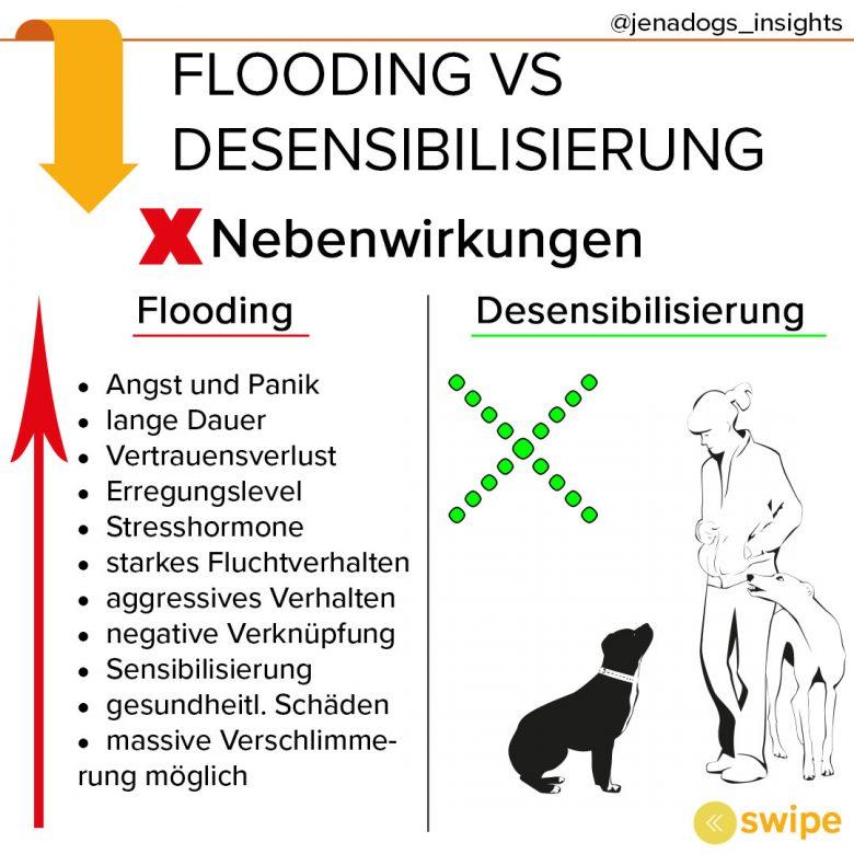 Flooding – Therapie durch Reizüberflutung?